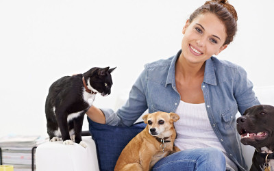 Why you need to Vaccinate your pet