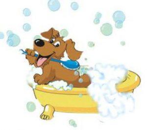Cartoon of dog in bath